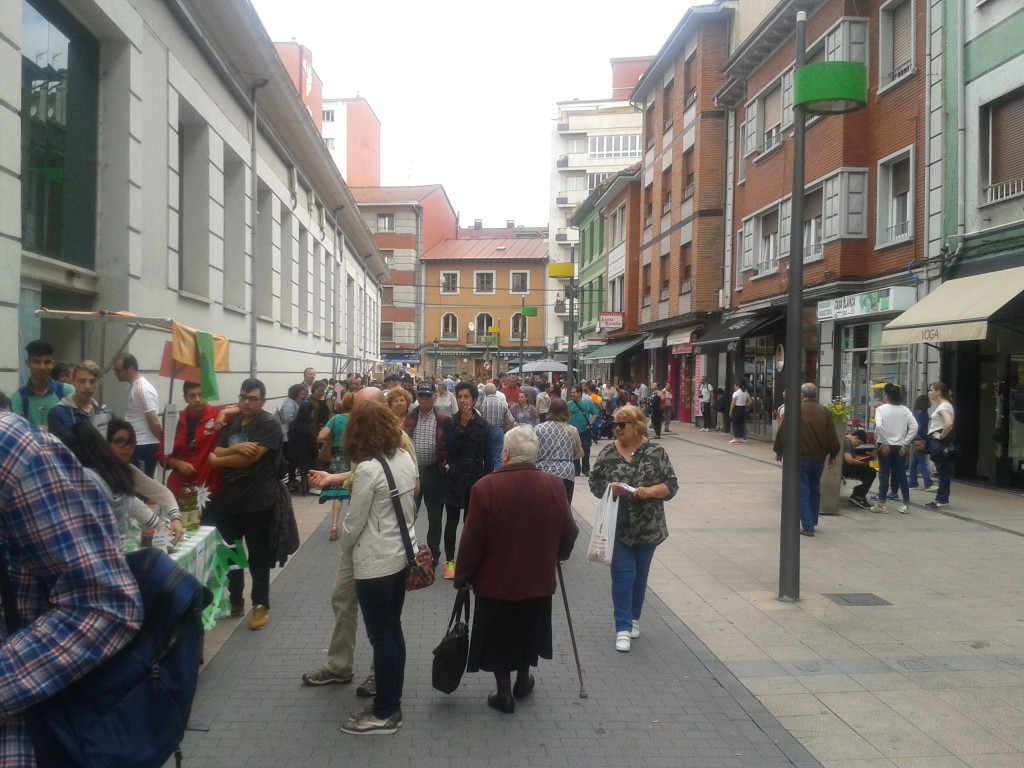 Mercado Langreo 31-05-17 (39)